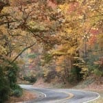 Autumn Roads at base of Blue Ridge Parkway by Anna B. Pruitt (Location: Patrick County) Honorable Mention