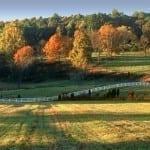 Montebello Fall Splendor by Ed Fuhr (Location: Montebello) Honorable Mention