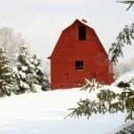 Morning Snow by Terry Crider (Location: Spotsylvania) Farms/Open Space Winner