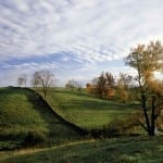 Fence Near Middleburg by Stephen Cromer from Aldie (Honorable Mention)