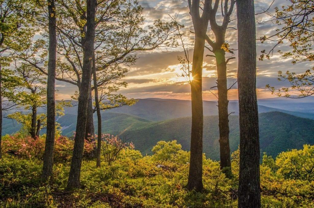 Mount Torry Sunset by Julie Richie (Location: Lyndhurst) Mountains & Valleys Winner