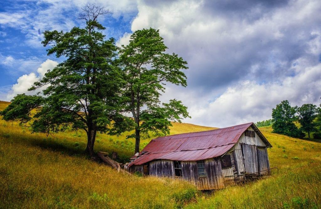 Rural Landscape by Robert Coles