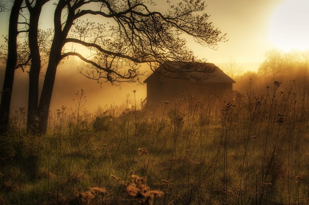 Foggy Sunrise at James River State Park by Roderick Perkinson