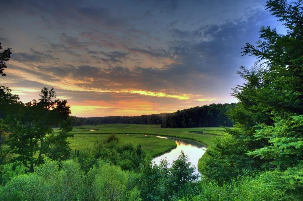 York River State Park Overlook by Paul Showalter