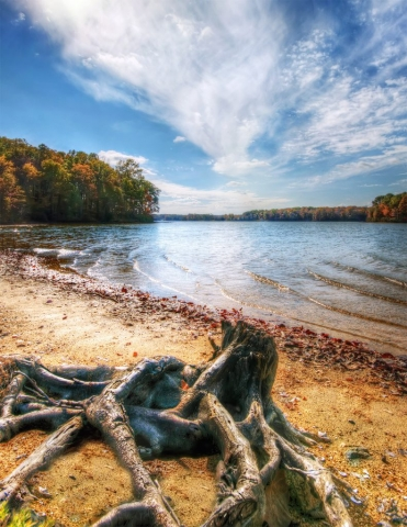 Virginia State Parks Winner: Lake Anna Autumn by Bill Dickinson (Spotsylvania)
