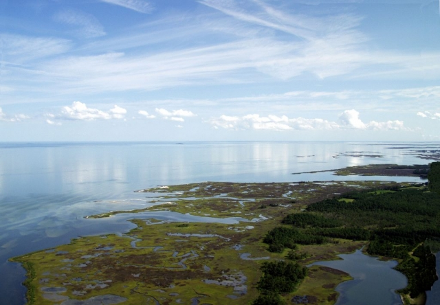 Aerial of the Chesapeake Bay by Kay Moneymaker