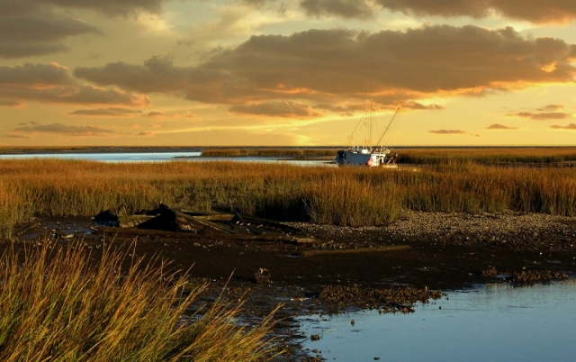 Marsh with Work Boat by Dianne Appel