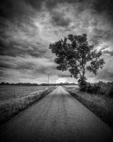 Country Road by James Betts