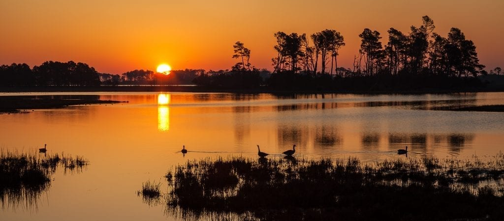 Sunrise on the Marsh by Deb Snelson (Assateague Island)
