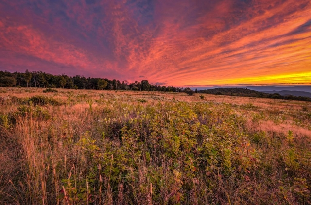 Big Meadows Sunset by Edward Episcopo (Luray)