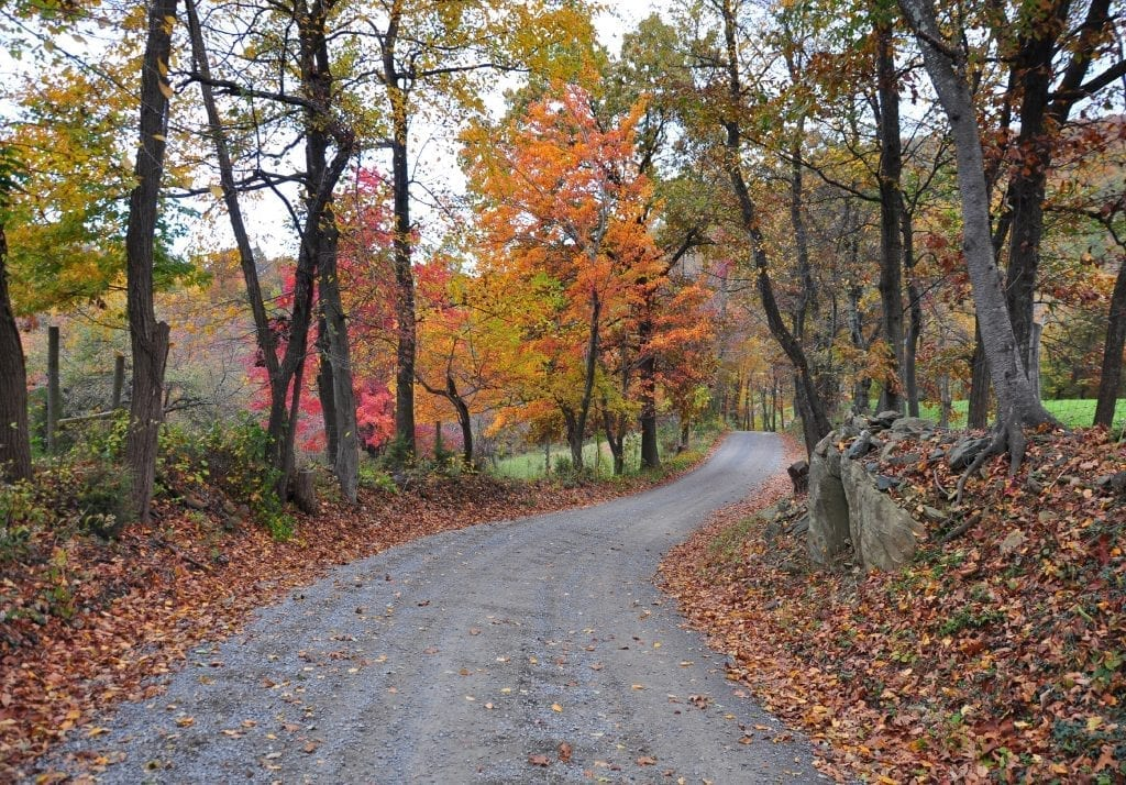 Country Roads by Richard Koth (Warren County)