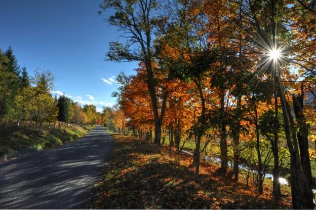 Sunburst Road by Kathy Cobb (Highland County)