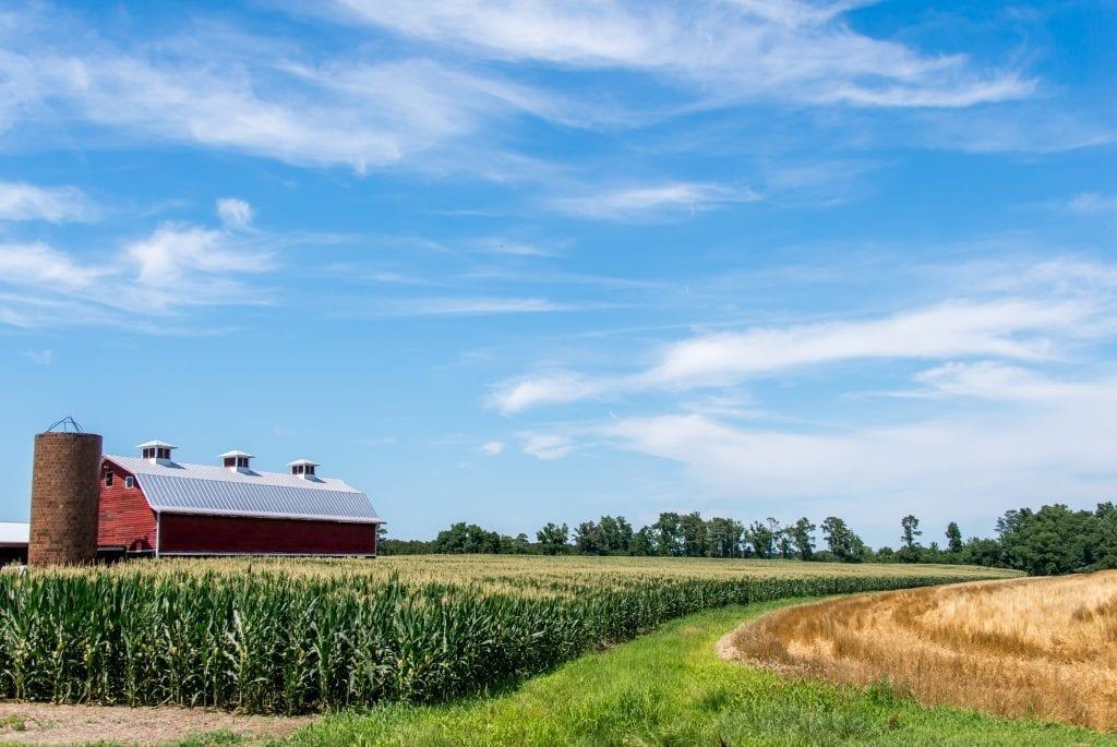 Still a Working Farm by Christine Hoggan (Charles City)