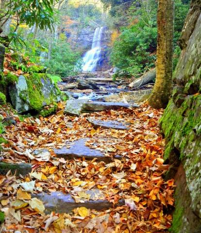 Cascade Falls in Autumn by Joseph Broyles (Pembroke)