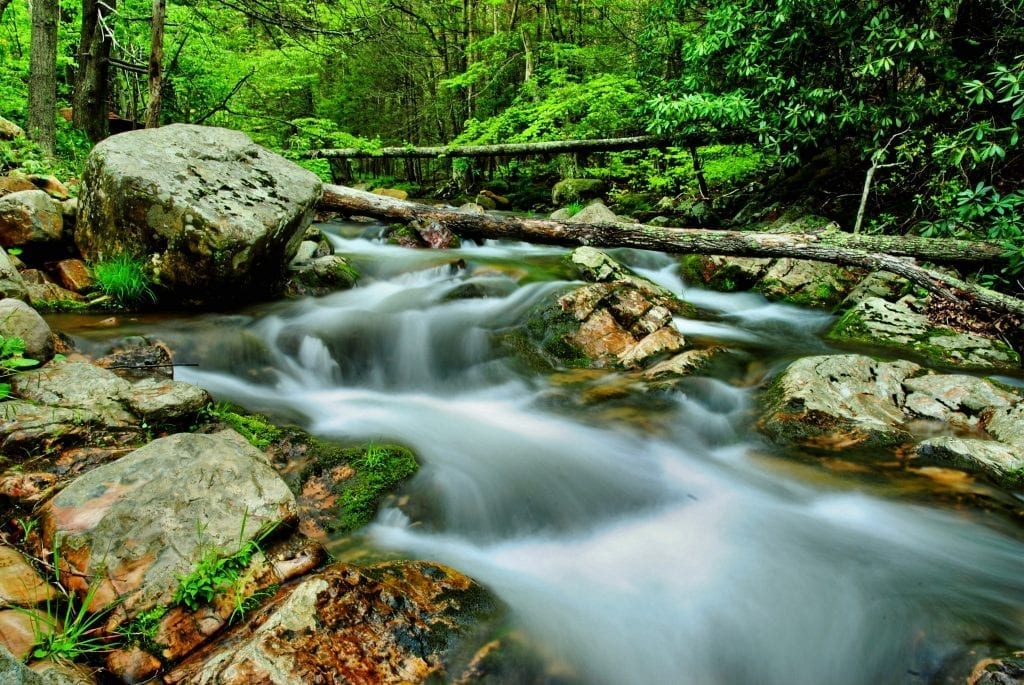 The Mesmerizing Waters of Crab Run by Doug Puffenbarger (Crab Run in Highland County)