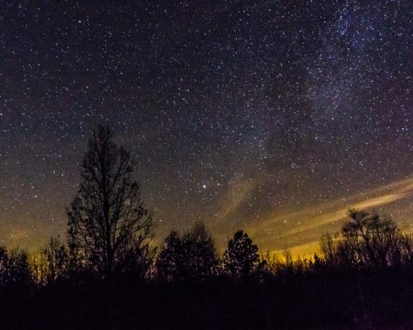 Starry Night in Nutbush by Robby Batte (Nutbush in Lunenberg County)