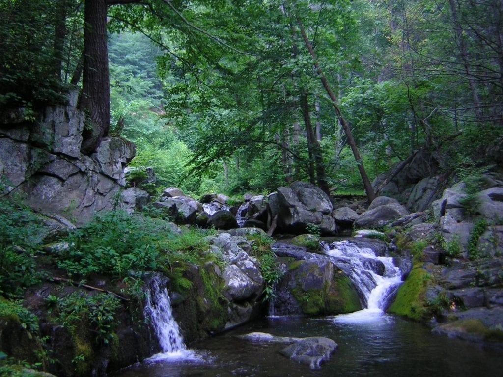 Rapidan Water Falls by Harold Allan