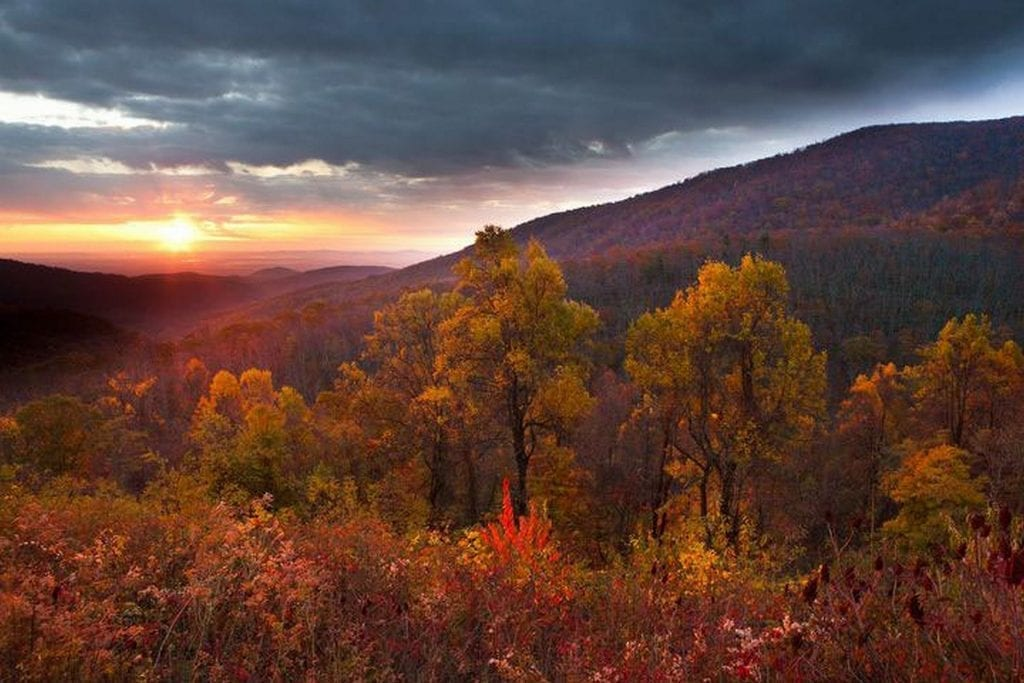 Autumn Splendor by Edward Fuhr (Skyline Drive)