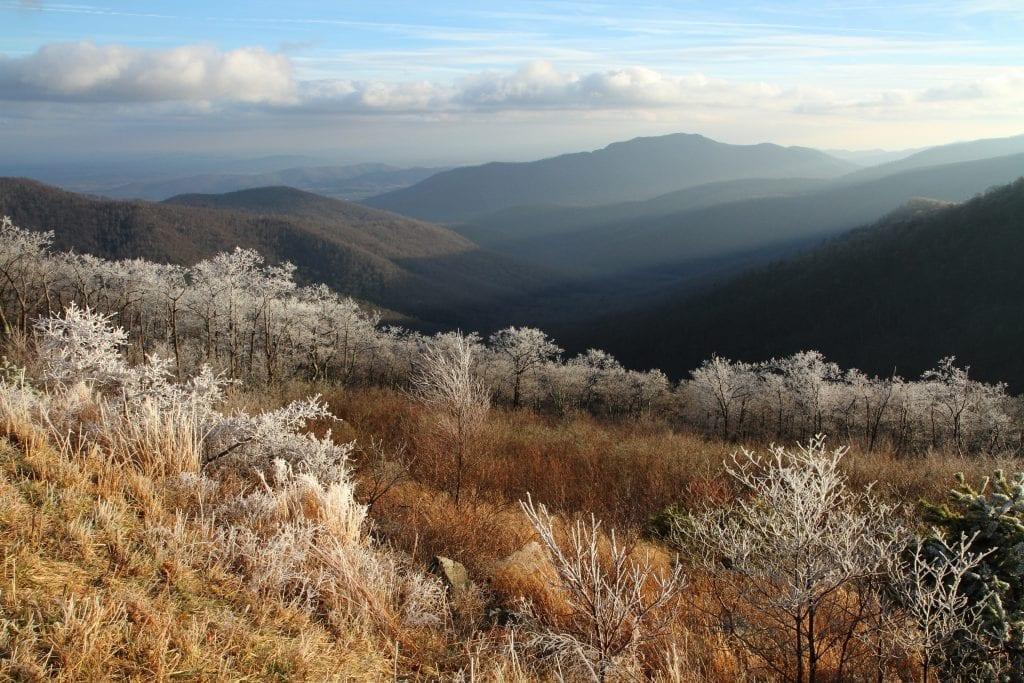 Best in Show Winner: Pinnacles Overlook, Winter by Jeffry Urban (Luray)