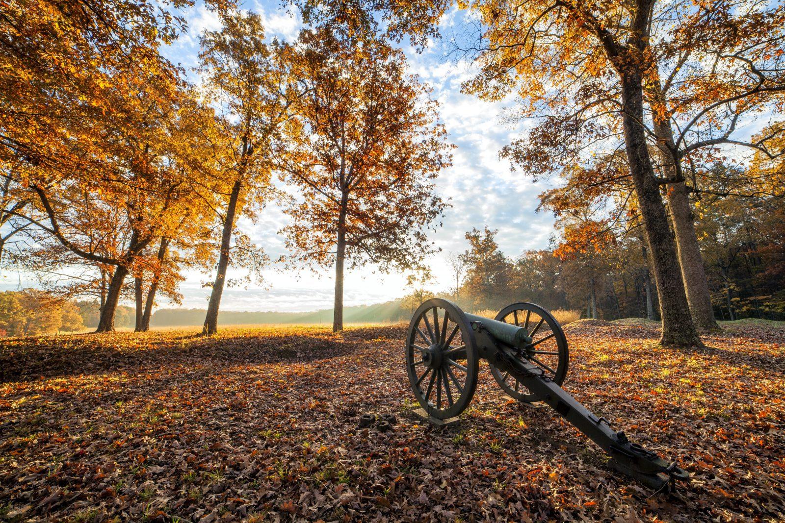 Farms & Open Space Winner: Wilderness Battlefield by Buddy Secor (Spotsylvania County)