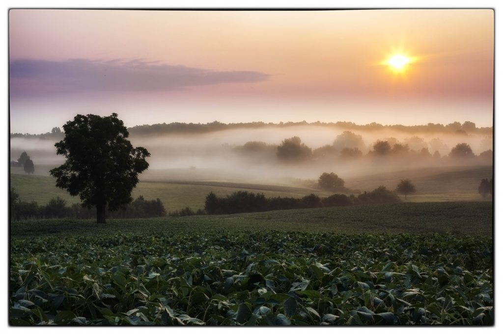 Farms & Open Spaces Winner: Chancellorsville Dawn  by Buddy Secor (Chancellorsville Battlefield)