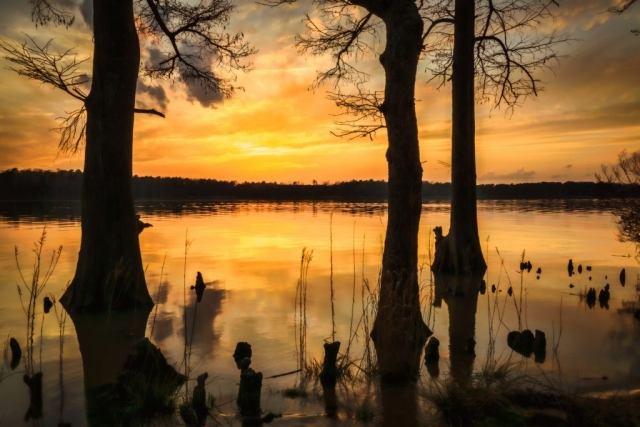 Route 5 Winner: Chickahominy Sunset by Shannon Schojan (Chickahominy Riverfront Park)