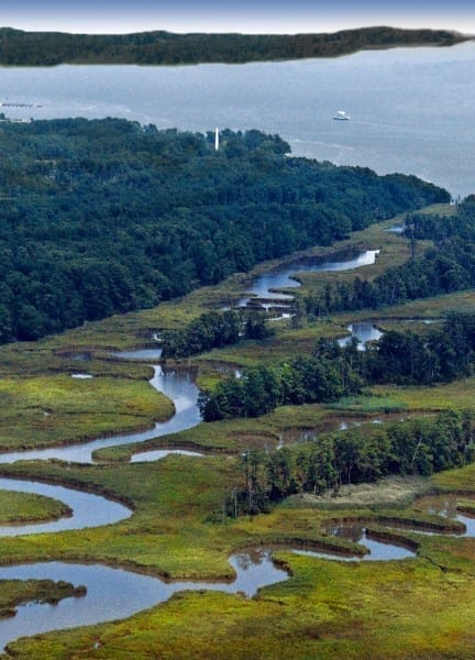Jamestown Island and Tributaries by Kay Moneymaker