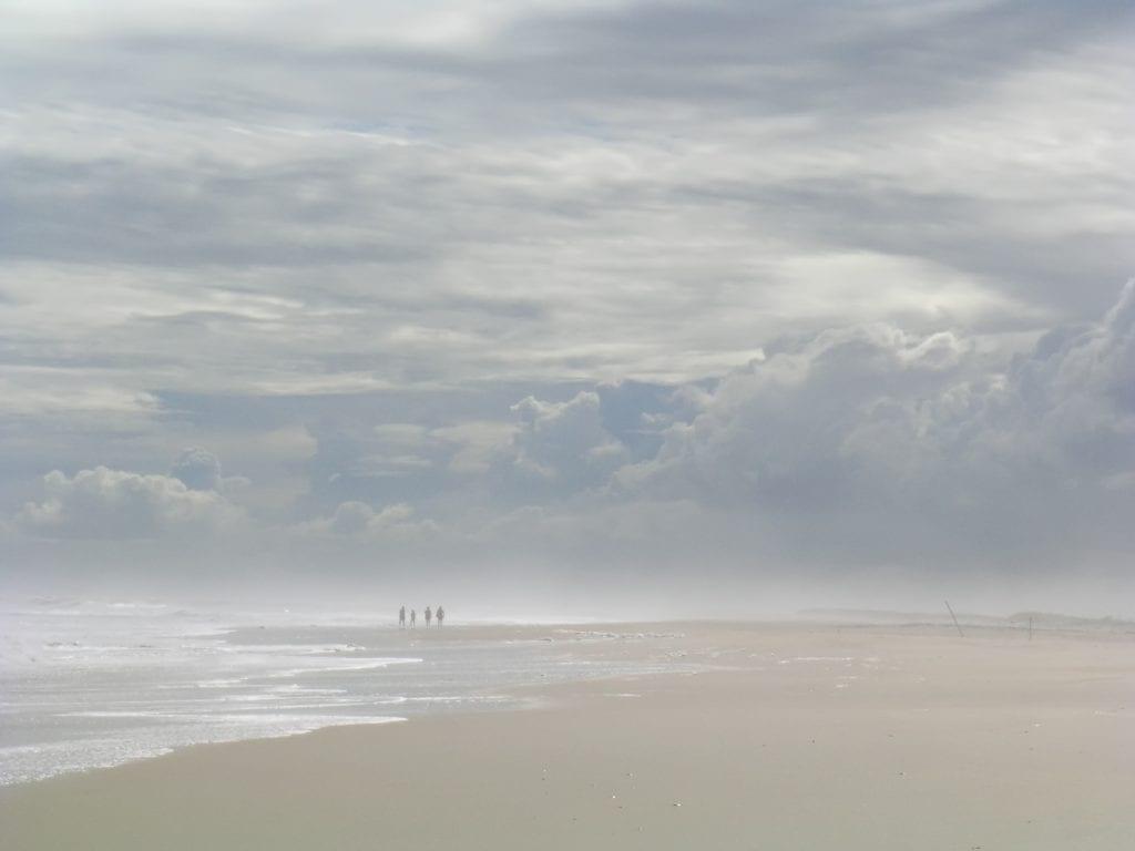 """Best in Show Winner: """"Family Beach Walk"""" (Assateague Island) by Kirk Carter of Christiansburg"""