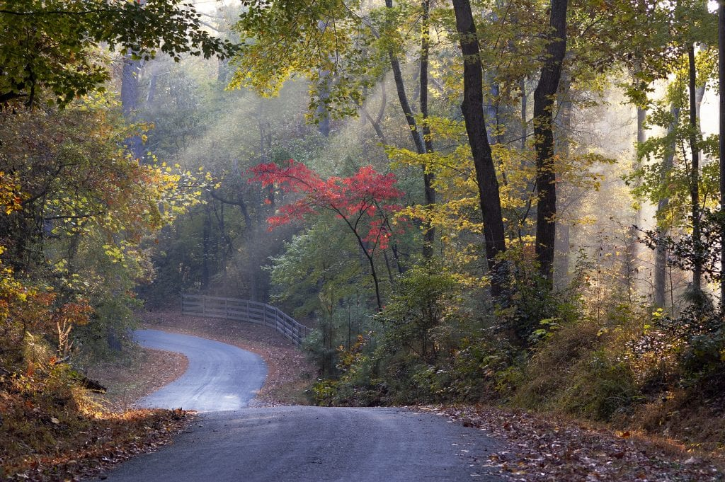 "Highways & Byways Category Winner: ""James City Road to Williamsburg"" (Lake Powell Road in James City County) by Roderick Perkinson of Williamsburg"