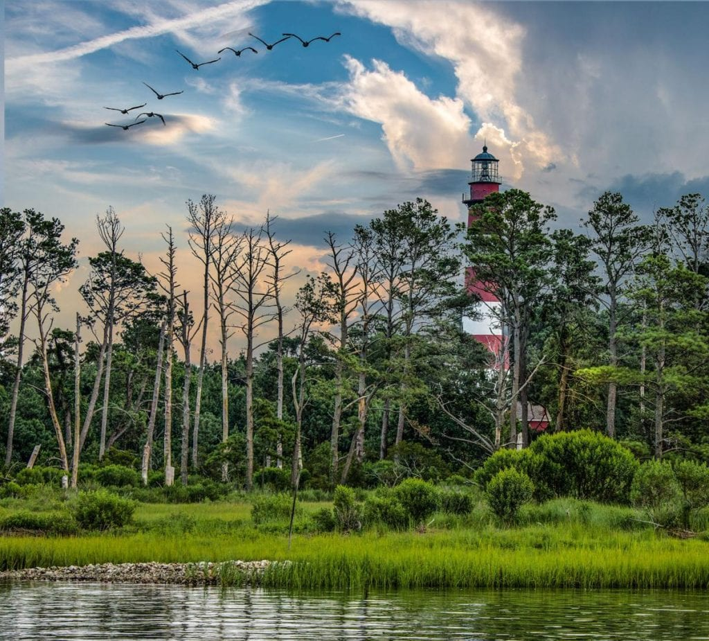 To preserve, protect, and enhance the scenic beauty of Virginia