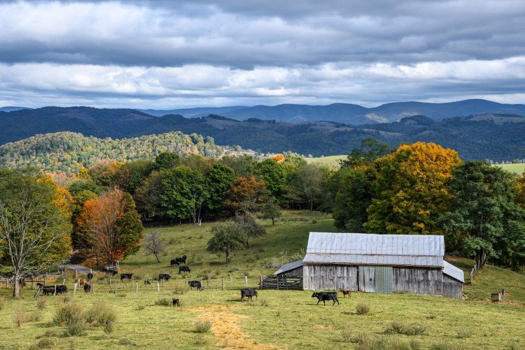 Seldom Seen Farm