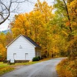 Rural Lane in Fall