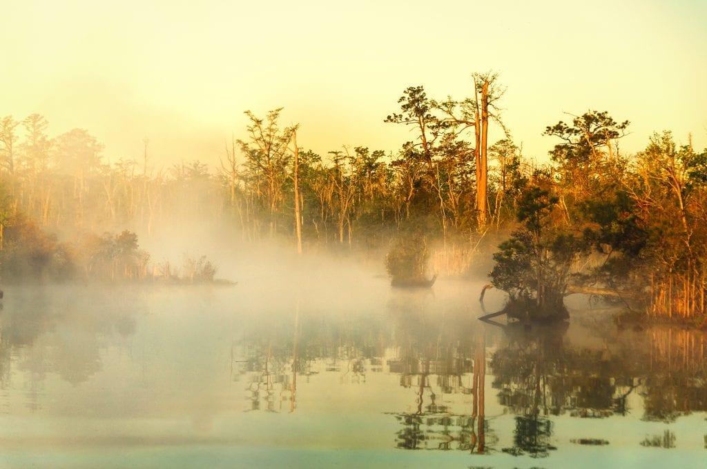 Foggy Sunrise on the North Landing